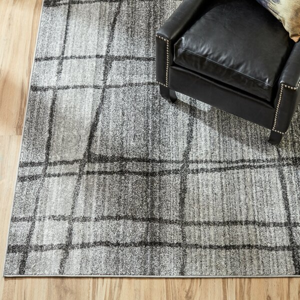 Korn Chalkboard Checkers Light Gray Area Rug by Mercury Row