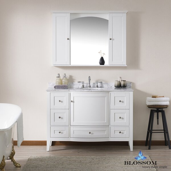 Glendale 48 Single Bathroom Vanity Set with Mirror by Darby Home Co