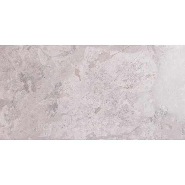 Tundra 12 x 24 Marble Field Tile in Gray by MSI