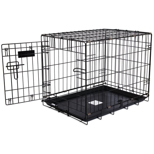 Jeffords Single-Door Home Training Pet Crate by Tucker Murphy Pet