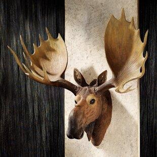 Alaskan Moose Trophy Wall Decor