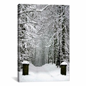 Winter Time Photographic Print on Canvas by Zipcode Design