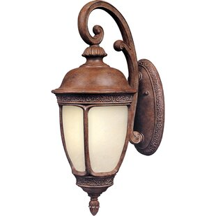 Best Choices Spinnaker 1-Light Outdoor Wall Lantern By Darby Home Co