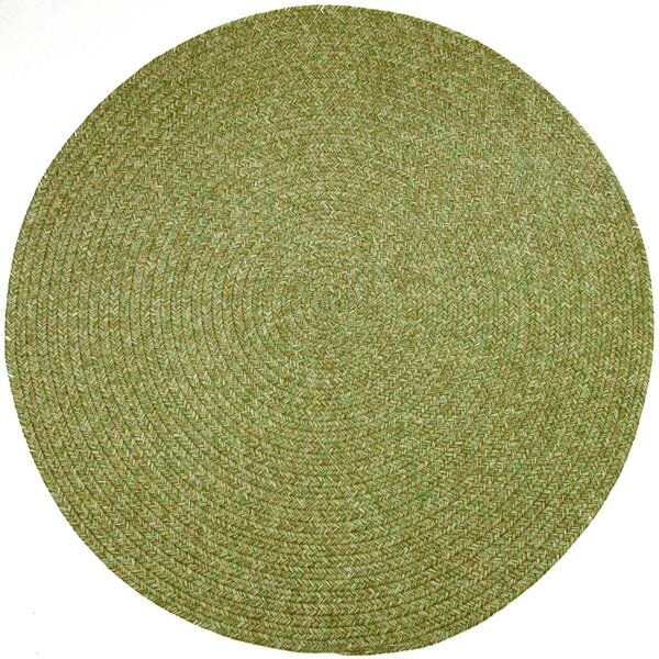 Reoti Green Indoor/Outdoor Area Rug by Meridian Rugmakers