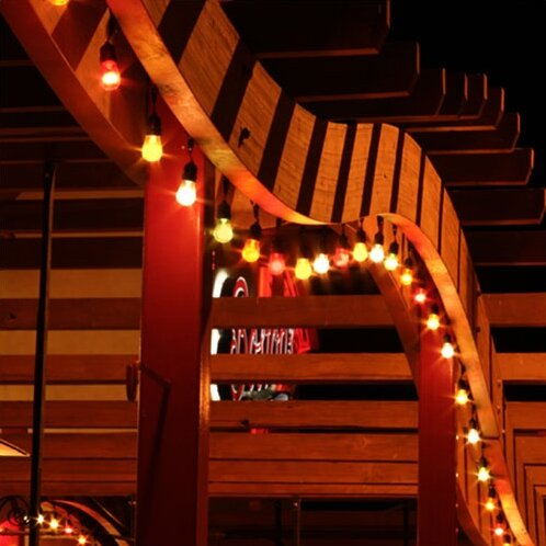 20 ft. Globe String Lights by American Lighting LLC