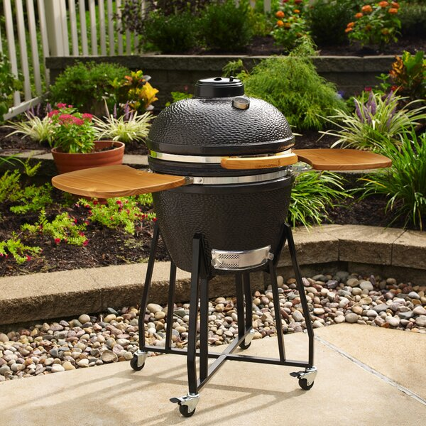 22 M Series Kamado Charcoal Grill with Smoker by Vision Grills