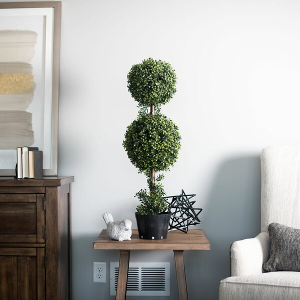 Double Ball Boxwood Topiary in Planters by Darby Home Co