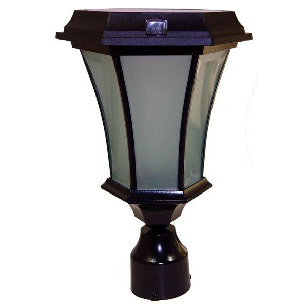 10-Light LED Lantern Head by Solar Goes Green