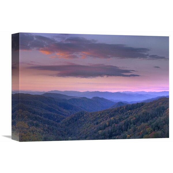 Nature Photographs Newfound Gap Great Smoky Mountains National Park North Carolina by Tim Fitzharris Photographic Print on Wrapped Canvas by Global Gallery