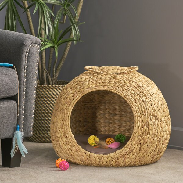 Rex Water Hyacinth Wicker Hooded Dog Bed with Fabric Cushion by Tucker Murphy Pet