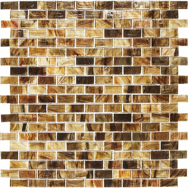 Riverside Brick 0.625 x 1.25 Glass Mosaic Tile in Clear by Parvatile