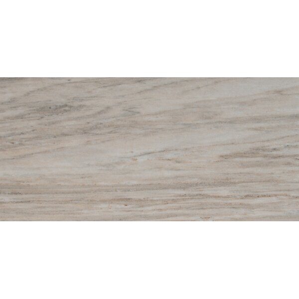 Palisandro Polished 12 x 24 Marble Mosaic Tile in Gray by MSI