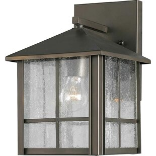 Look for Hesse 1-Light Outdoor Wall Lantern By Bloomsbury Market