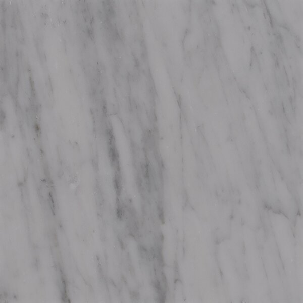 18 x 18 Marble Field Tile in Carrara White by MSI