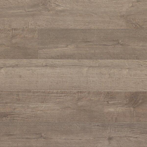 Envique 7.5 x 54.34 x 12mm Oak Laminate Flooring in Memoir Oak by Quick-Step