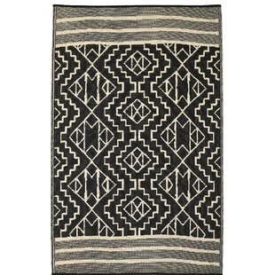 Reviews Tayler Indoor/Outdoor Black/Beige Area Rug By Union Rustic