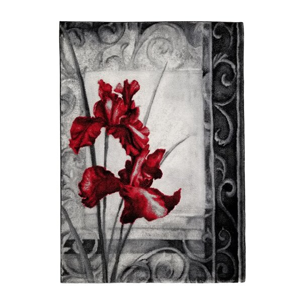 Terranova BlackRed Area Rug by Winston Porter