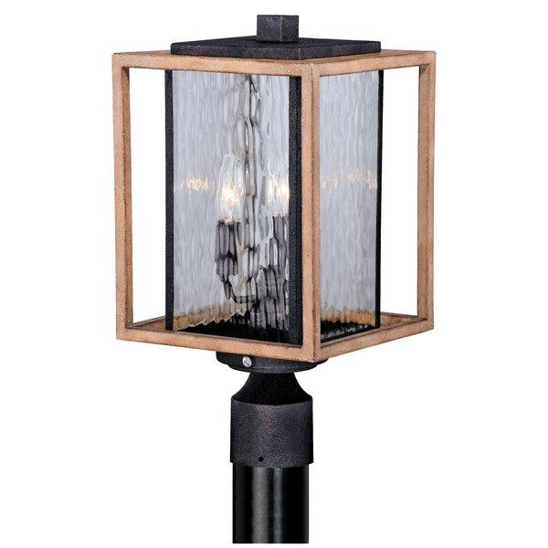 Brandie 3-Light Outdoor Lantern Head by Trent Austin Design