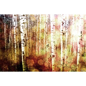 'Aspen' by Parvez Taj Painting Print on Wrapped Canvas by Mercury Row
