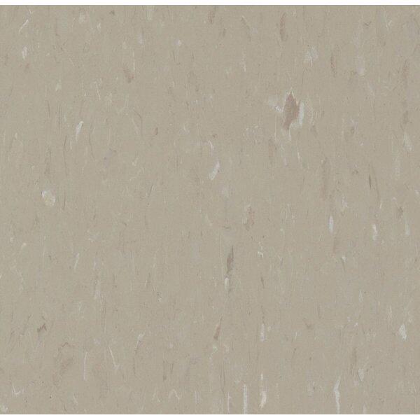 Alternatives 12 x 12 x 160mm Luxury Vinyl Tile in Warm Stone by Congoleum