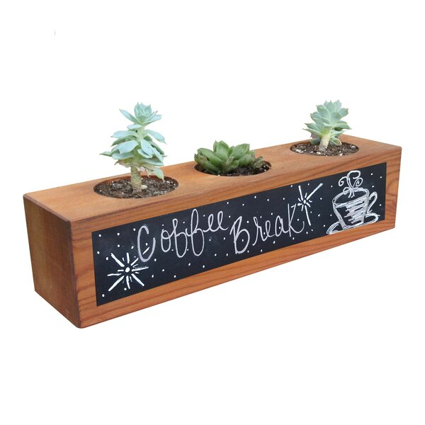 Carls Succulent Planter Box with Chalkboard by Wrought Studio