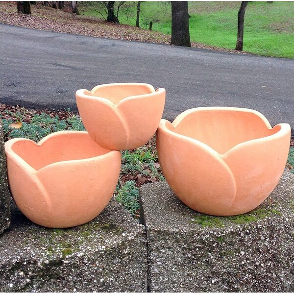 Puppis Hand Pressed Ancient Stressed Petal Terracotta Pot Planter by August Grove