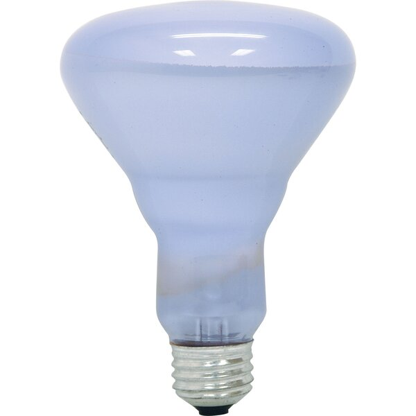 120-Volt 65W Light Bulb by GE