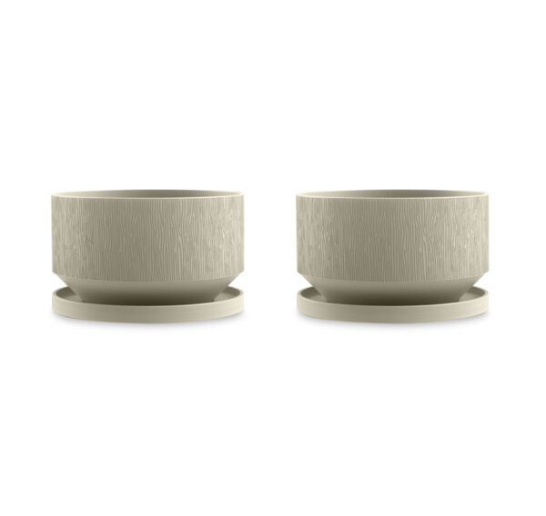 Cipriano Plastic Score Pot Planter (Set of 2) by George Oliver