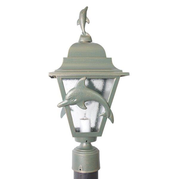 Penfield Dolphin Series 1-Light Lantern Head by Alcott Hill