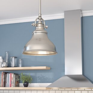 Deals Mueller 1-Light Cone Pendant By Beachcrest Home