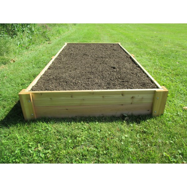 Stout 4 ft. x 8 ft. Cedar Raised Garden by Freeport Park