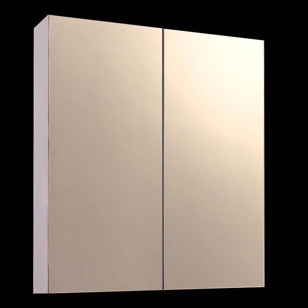 Kanye 24 x 24 Surface Mount Frameless Beveled Medicine Cabinet by Orren Ellis