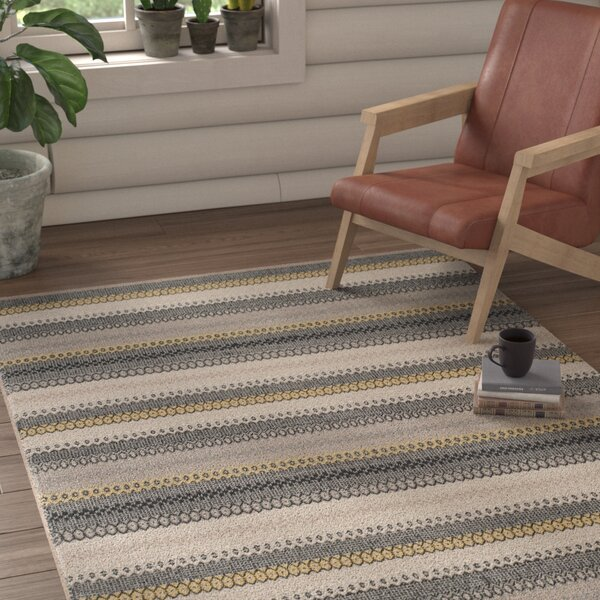 Chiginagak Hand-woven Gray Area Rug by Loon Peak