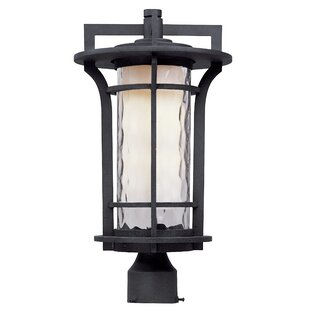 Buy clear Espitia Outdoor 1-Light LED Lantern Head By Millwood Pines