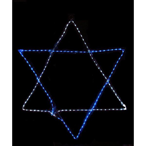 Rope Light Star of David Hanging Hanukkah Decoration by Vickerman