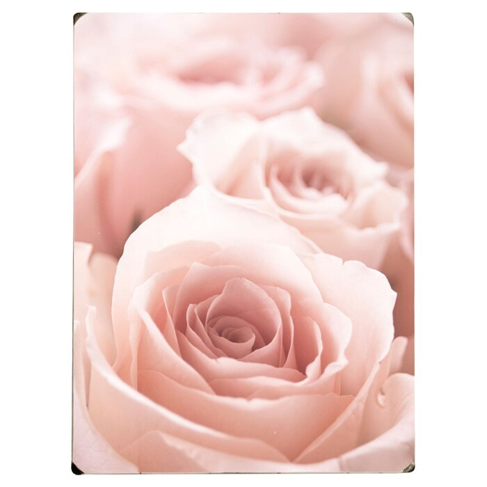 Pink Roses Photographic Print on Wood