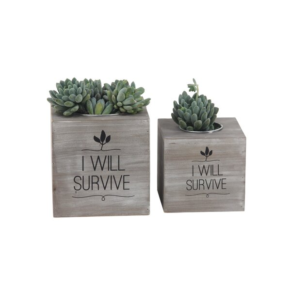 Matthes Rustic I Will Survive Cube 2-Piece Wood Planter Box Set by Wrought Studio