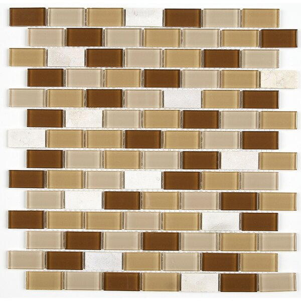 Gibson 12 x 13 Mixed Material Mosaic Tile in Caramelo by Itona Tile