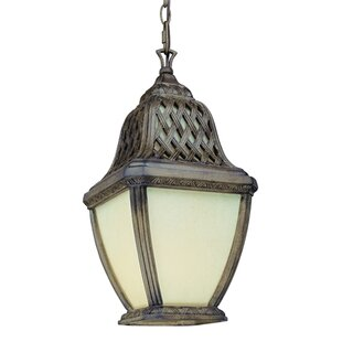 Affordable Price Theodore 1-Light Outdoor Hanging Lantern By Darby Home Co