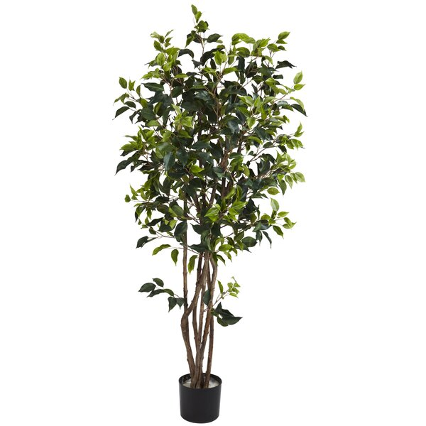 Ficus Bushy Tree in Pot by Nearly Natural