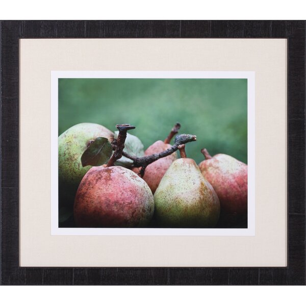 Comice Pears II by Rachel Perry Framed Photographic Print by Art Effects