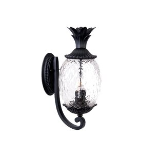 Kyra 3-Light Outdoor Sconce By Beachcrest Home