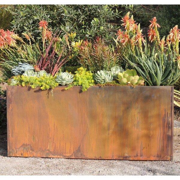 Joachim Corten Steel Planter Box by 17 Stories