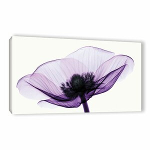 Anemone II Graphic Art on Wrapped Canvas by Lark Manor