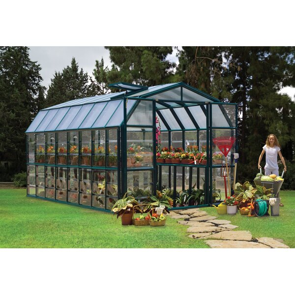 Grand Gardener 2 Clear 8 Ft. W x 16 Ft. D Greenhouse by Rion Greenhouses