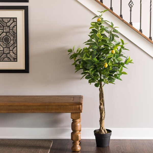 Real Touch Lemon Foliage Tree in Pot by Darby Home Co