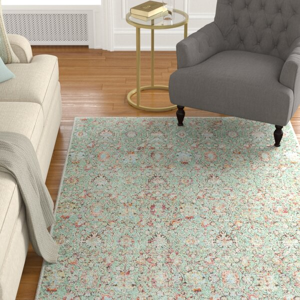 Kaiden Distressed Sage Area Rug by Charlton Home