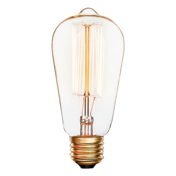 25W E27 Incandescent Light Bulb by Darice