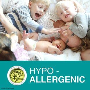 Smooth Hypoallergenic Mattress Cover ByTRU Lite