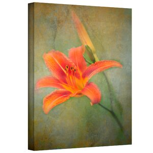 Reach for Life' by Antonio Raggio Photographic Print on Canvas by ArtWall
